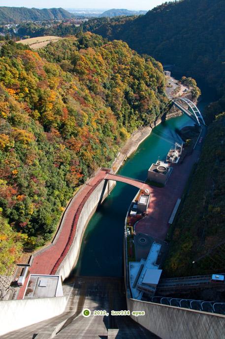 宮ヶ瀬ダムの紅葉 愛川町 2012/11/21
