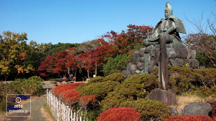 カエデの紅葉 鎌倉市・源氏山公園 2016/11/13
