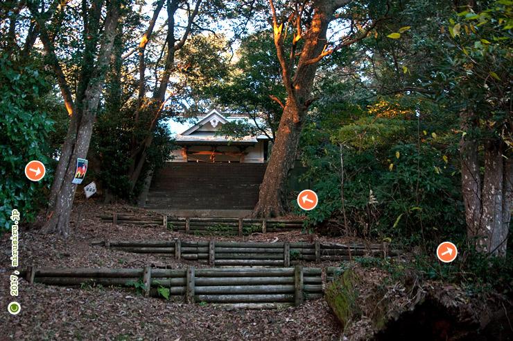 カゴノキ 大磯町・鷹取神社 2017/12/14