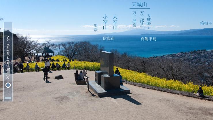 ナノハナ 二宮町・吾妻山公園 2017/02/02