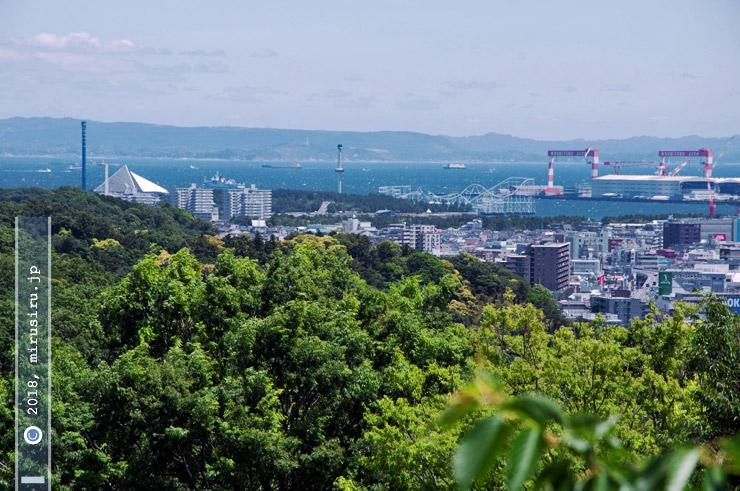 新緑 横浜市金沢区・金沢自然公園・うきうき林の上から 2018/05/20