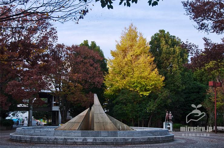 イチョウの黄葉 平塚市・中央図書館中庭 2018/11/25