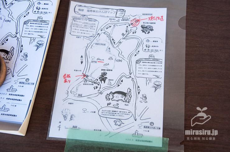 鳥屋 福寿草おさんぽマップ(2018年版)
