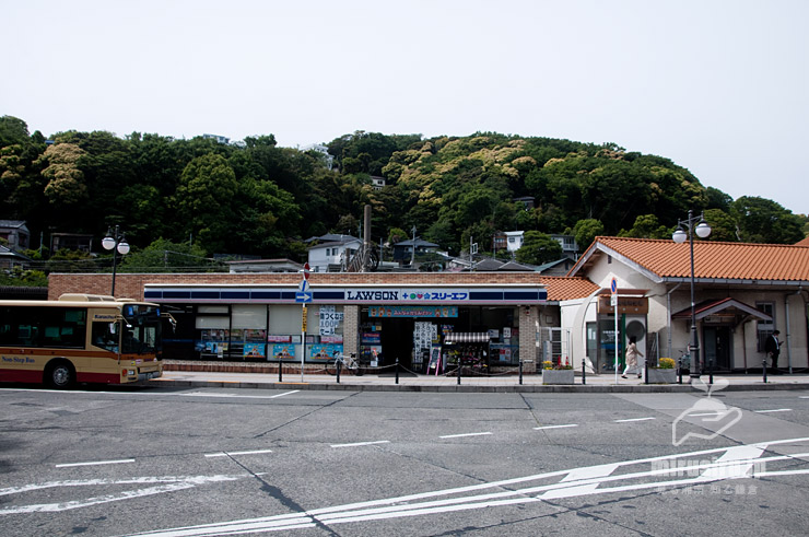 時期・色的に開花しているスダジイか 大磯町・羽白山(坂田山)方面 2021/05/08