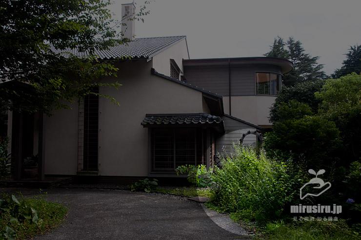 カリガネソウの大型になる草姿 横浜市戸塚区・俣野別邸庭園 2021/07/26